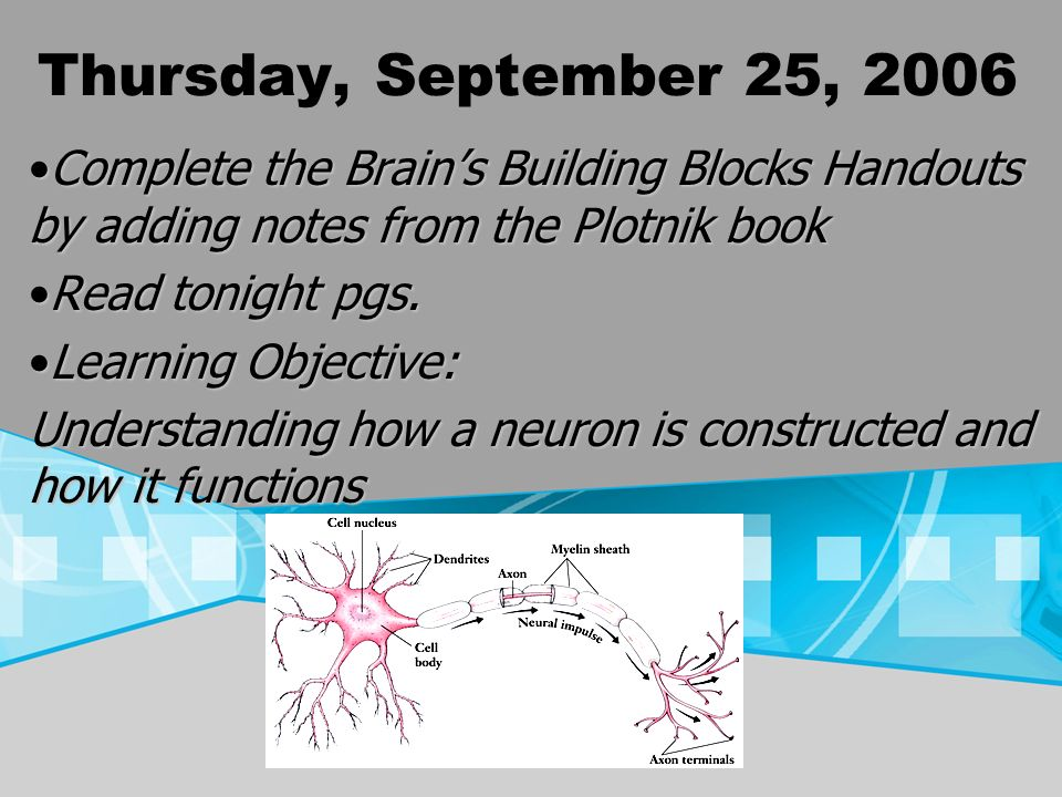 Thursday, September 25, 2006 Complete the Brains Building Blocks Handouts by adding notes from the Plotnik bookComplete the Brains Building Blocks Han