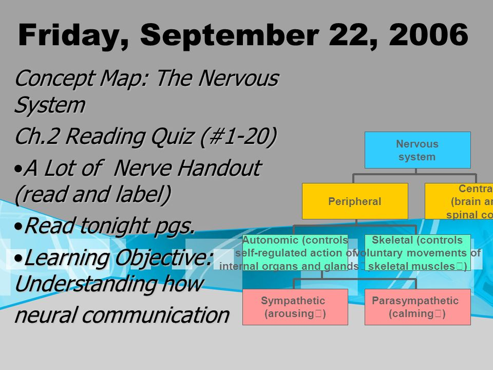 Friday, September 22, 2006 Concept Map: The Nervous System Ch.2 Reading Quiz (#1-20) A Lot of Nerve Handout (read and label)A Lot of Nerve Handout (re