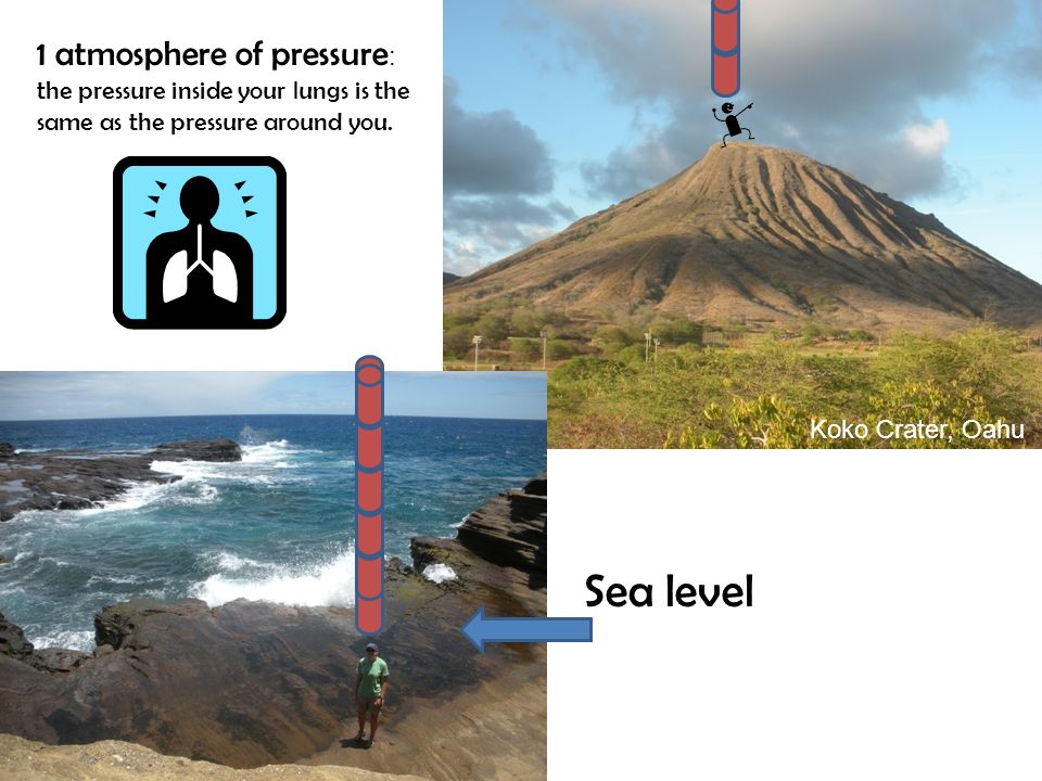 Sea level Koko Crater, Oahu 1 atmosphere of pressure : the pressure inside your lungs is the same as the pressure around you.