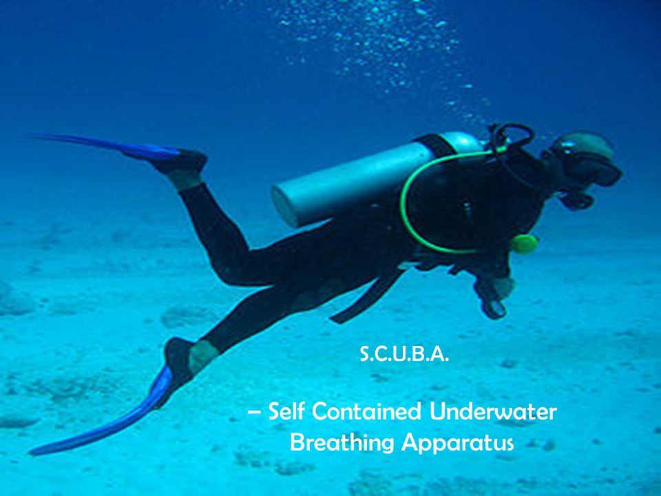 S.C.U.B.A. – Self Contained Underwater Breathing Apparatus