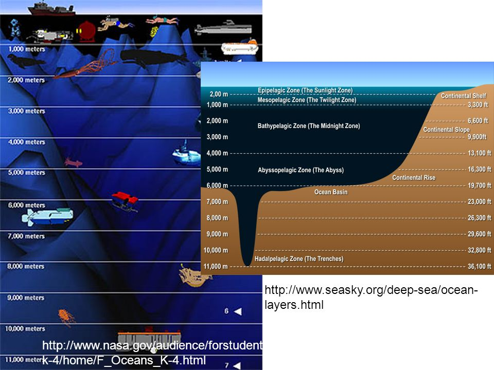 http://www.seasky.org/deep-sea/ocean- layers.html http://www.nasa.gov/audience/forstudents/ k-4/home/F_Oceans_K-4.html