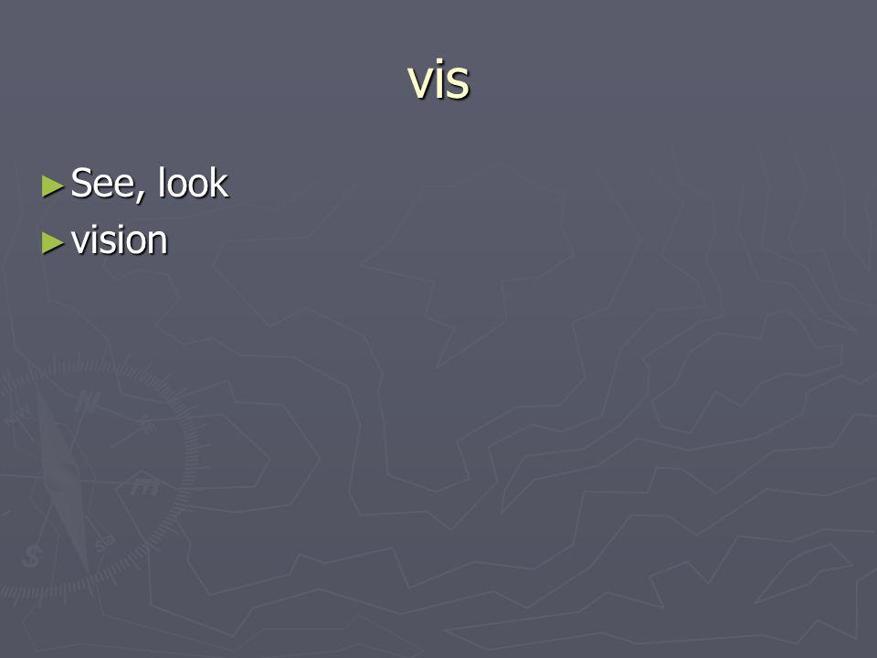 vis See, look See, look vision vision