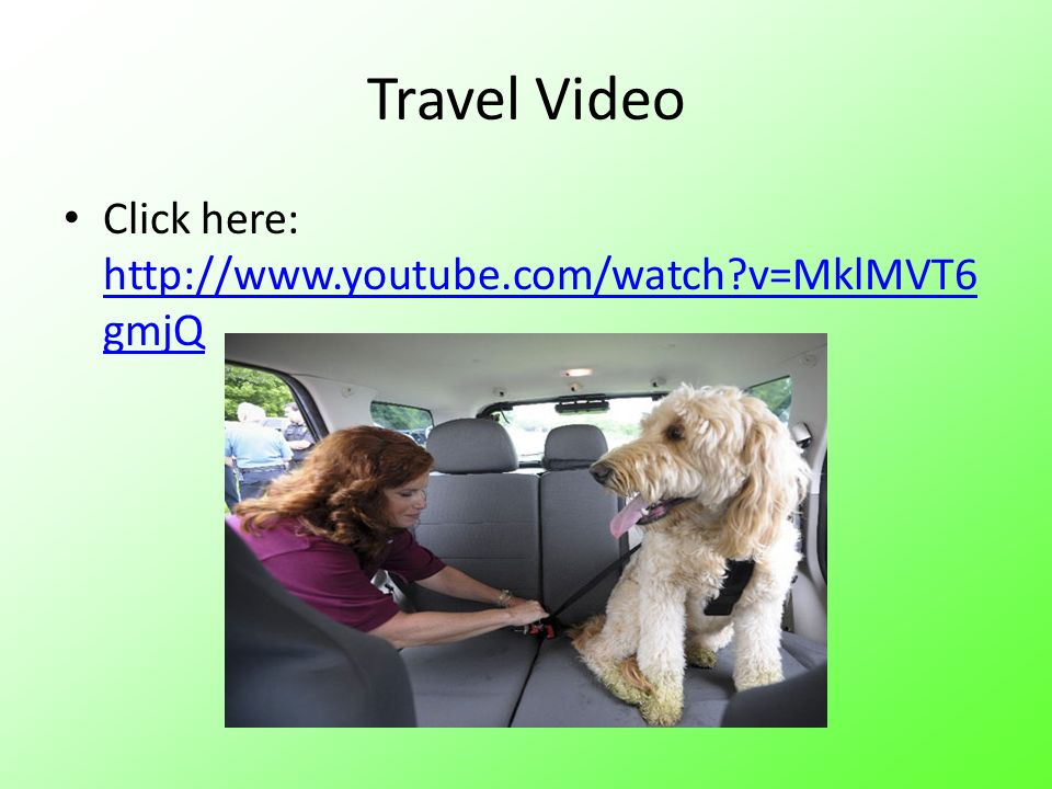 Travel Video Click here: http://www.youtube.com/watch?v=MklMVT6 gmjQ http://www.youtube.com/watch?v=MklMVT6 gmjQ