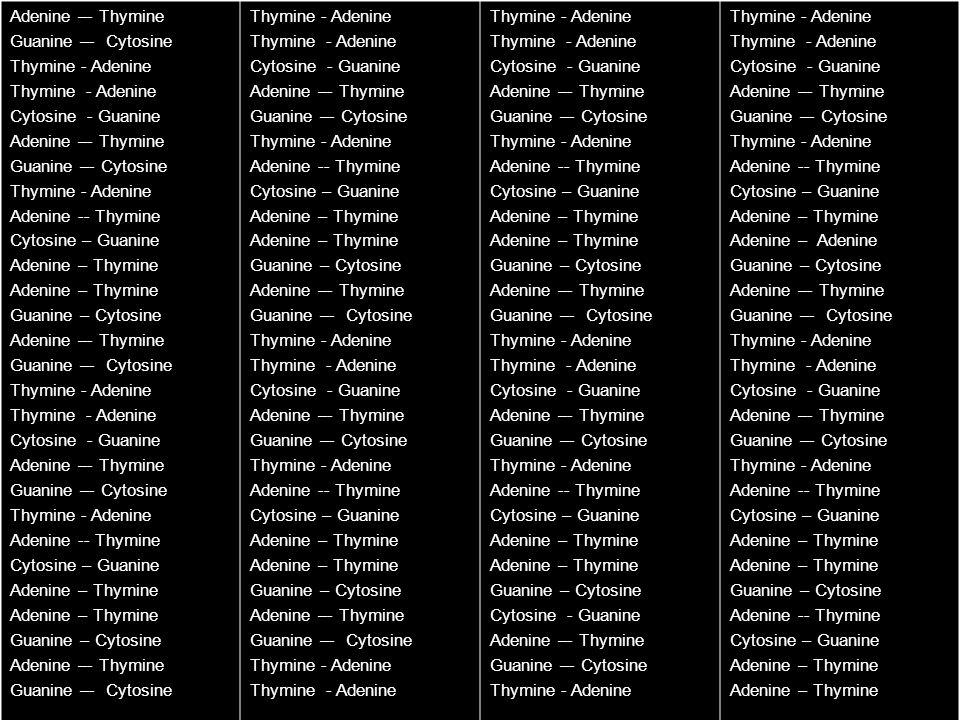 Adenine –- Thymine Guanine –- Cytosine Thymine - Adenine Cytosine - Guanine Adenine –- Thymine Guanine –- Cytosine Thymine - Adenine Adenine -- Thymin