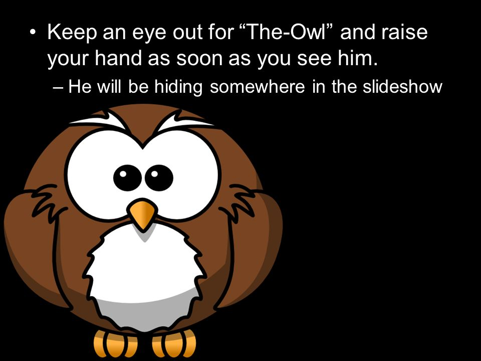 Keep an eye out for The-Owl and raise your hand as soon as you see him.