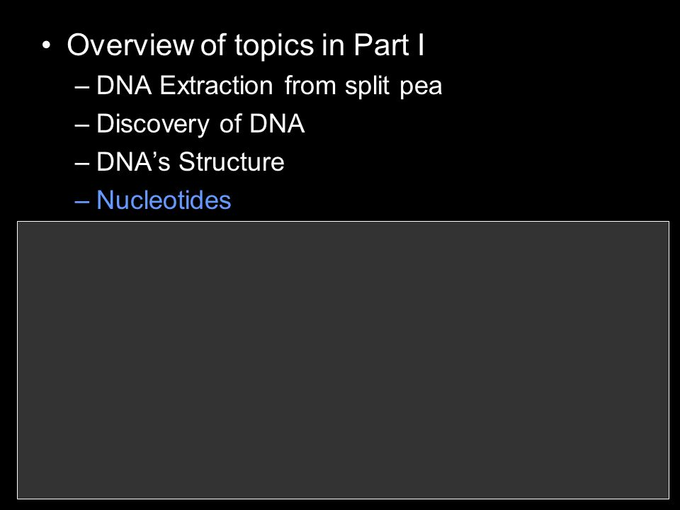 Overview of topics in Part I –DNA Extraction from split pea –Discovery of DNA –DNAs Structure –Nucleotides –Building a DNA model –DNA replication –Cell Division –Chromosomes –Phases of Mitosis