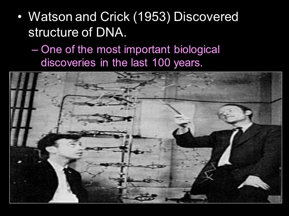 Watson and Crick (1953) Discovered structure of DNA.