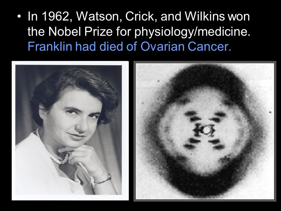 In 1962, Watson, Crick, and Wilkins won the Nobel Prize for physiology/medicine.