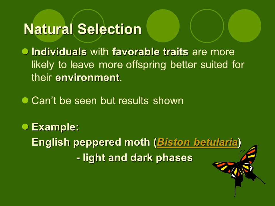 Natural Selection Individualsfavorabletraits environment Individuals with favorable traits are more likely to leave more offspring better suited for their environment.