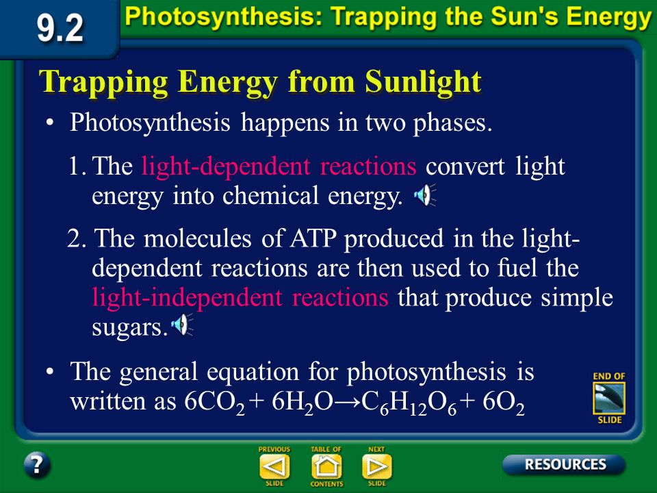 Section 9.2 Summary – pages 225-230 Trapping Energy from Sunlight The process that uses the suns energy to make simple sugars is called photosynthesis.