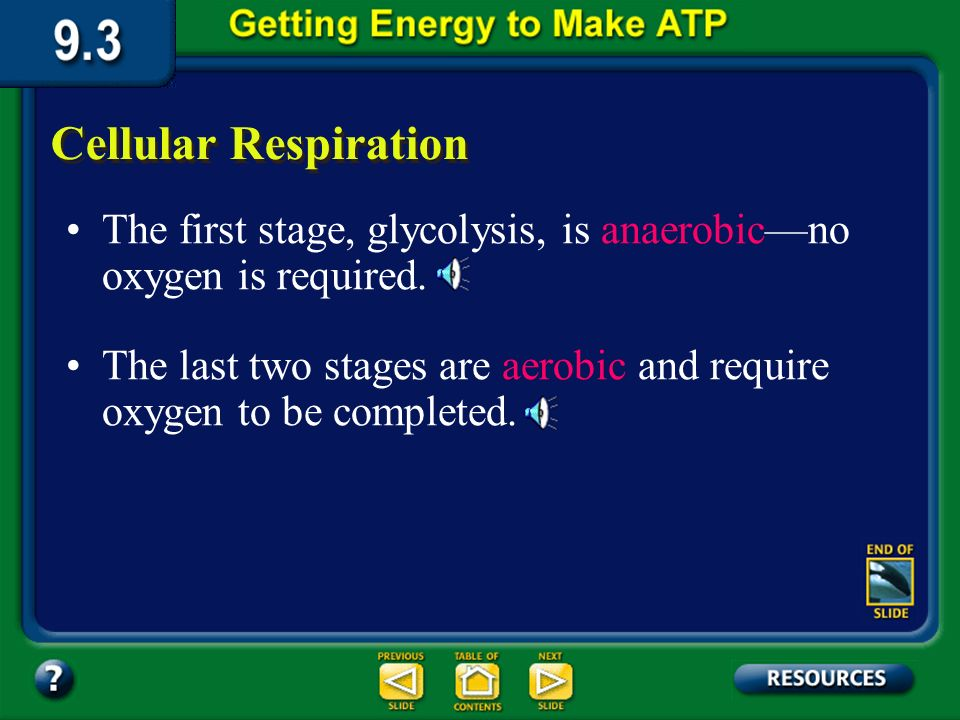 Section 9.3 Summary – pages 231-237 Cellular Respiration The process by which mitochondria break down food molecules to produce ATP is called cellular respiration.