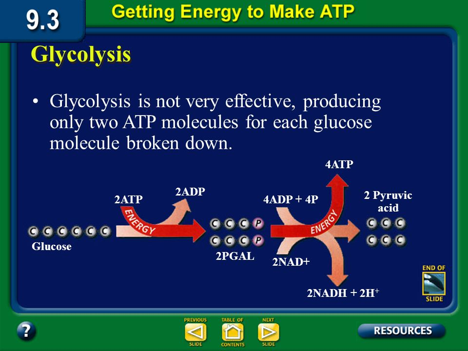 Section 9.3 Summary – pages 231-237 Glycolysis Glycolysis is a series of chemical reactions in the cytoplasm of a cell that break down glucose, a six-carbon compound, into two molecules of pyruvic acid, a three-carbon compound.