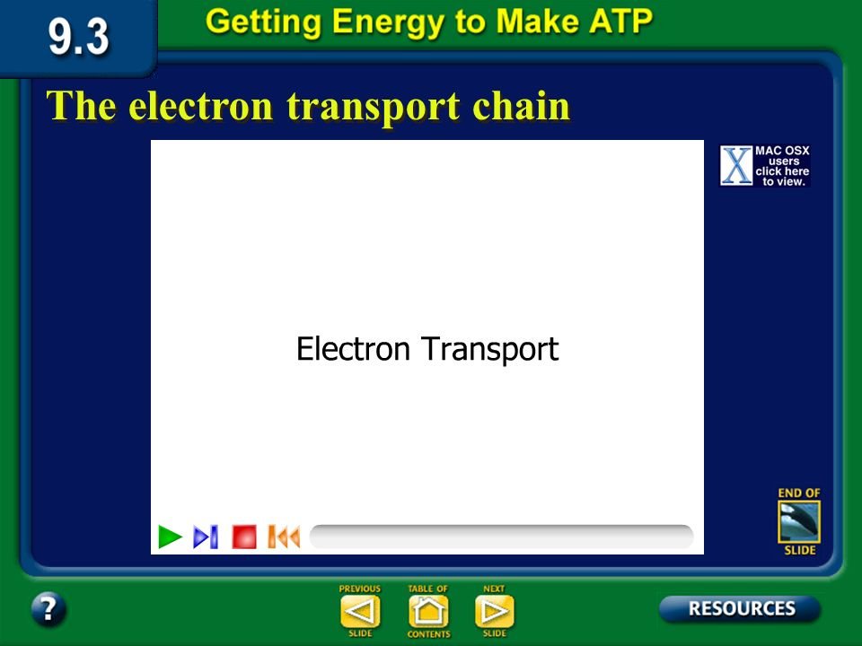 Section 9.3 Summary – pages 231-237 The electron transport chain In the electron transport chain, the carrier molecules NADH and FADH 2 gives up electrons that pass through a series of reactions.