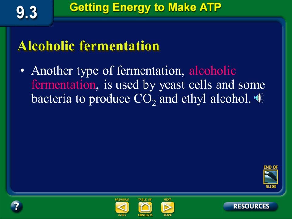 Section 9.3 Summary – pages 231-237 Lactic acid fermentation This releases NAD + to be used in glycolysis, allowing two ATP molecules to be formed for