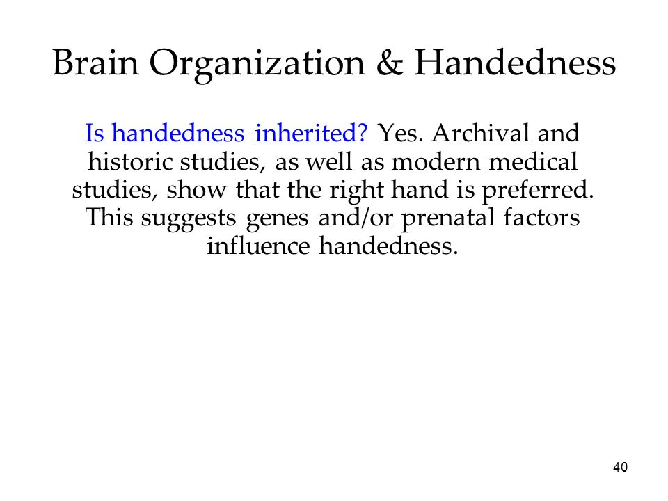 40 Brain Organization & Handedness Is handedness inherited? Yes. Archival and historic studies, as well as modern medical studies, show that the right