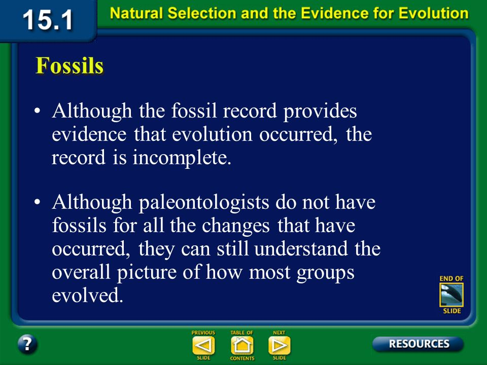 Section 15.1 Summary – pages 393-403 Fossils Fossils are an important source of evolutionary evidence because they provide a record of early life and