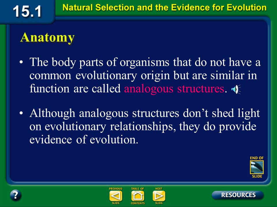 Section 15.1 Summary – pages 393-403 Anatomy Structural features with a common evolutionary origin are called homologous structures. Homologous struct