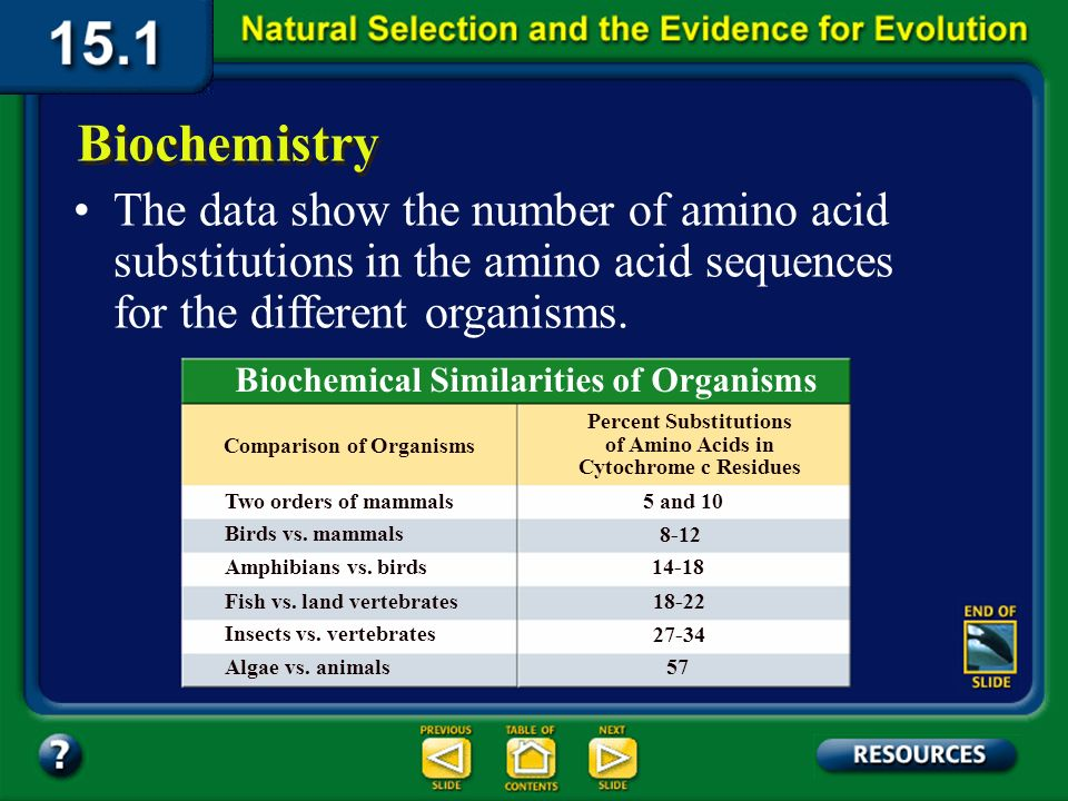 Section 15.1 Summary – pages 393-403 Biochemistry One enzyme, cytochrome c, occurs in organisms as diverse as bacteria and bison. Biologists compared