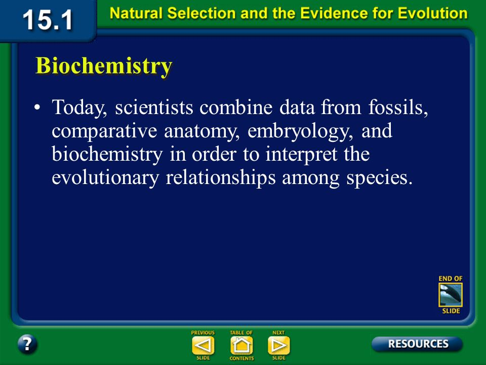 Section 15.1 Summary – pages 393-403 Since Darwins time, scientists have constructed evolutionary diagrams that show levels of relationships among spe