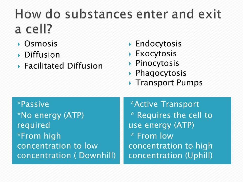 *Active Transport * Requires the cell to use energy (ATP) * From low concentration to high concentration (Uphill) Osmosis Diffusion Facilitated Diffusion Endocytosis Exocytosis Pinocytosis Phagocytosis Transport Pumps *Passive *No energy (ATP) required *From high concentration to low concentration ( Downhill)