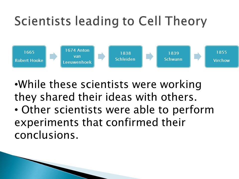 1665 Robert Hooke 1674 Anton van Leeuwenhoek 1838 Schleiden 1839 Schwann 1855 Virchow While these scientists were working they shared their ideas with others.