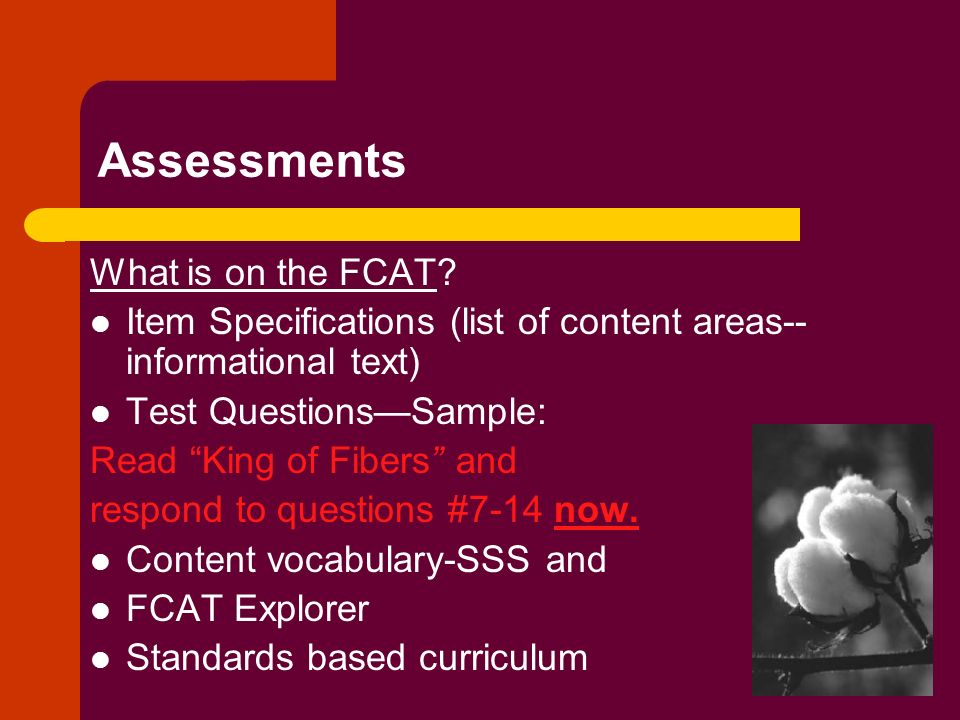 Assessments What is on the FCAT? Item Specifications (list of content areas-- informational text) Test QuestionsSample: Read King of Fibers and respon