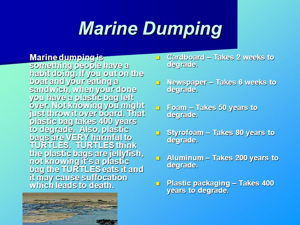 Marine Dumping Marine dumping is something people have a habit doing. If you out on the boat and your eating a sandwich, when your done you have a pla