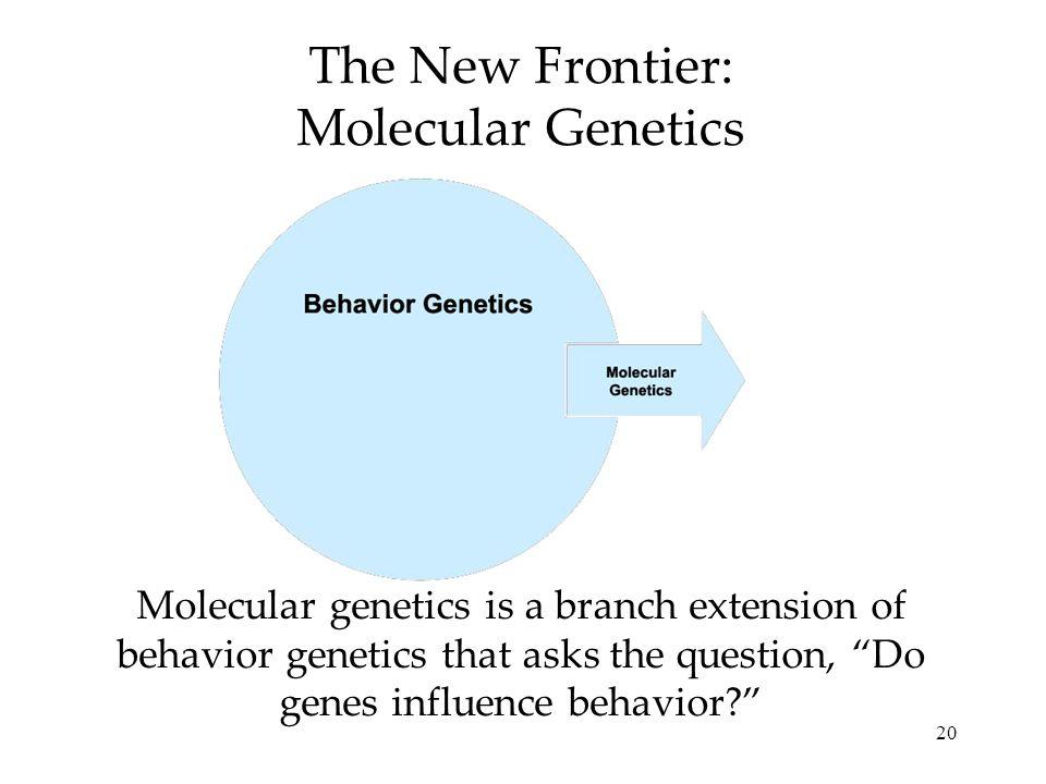 20 The New Frontier: Molecular Genetics Molecular genetics is a branch extension of behavior genetics that asks the question, Do genes influence behav