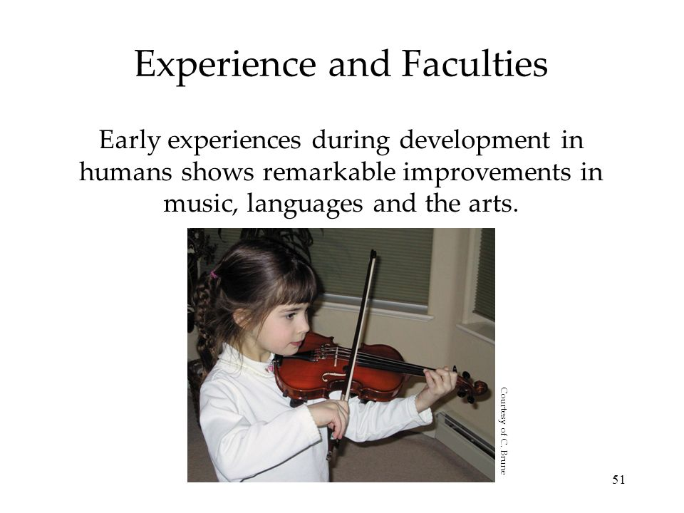 51 Experience and Faculties Early experiences during development in humans shows remarkable improvements in music, languages and the arts. Courtesy of