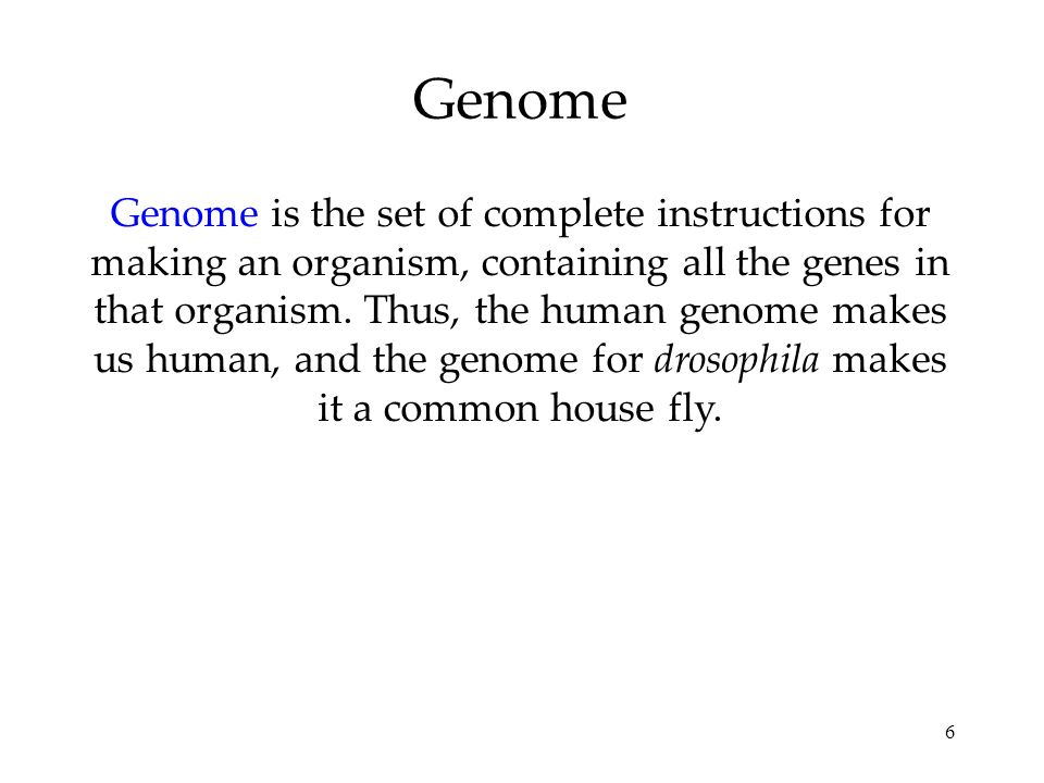 6 Genome Genome is the set of complete instructions for making an organism, containing all the genes in that organism.