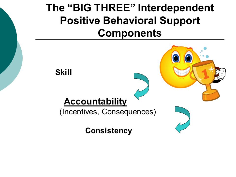 The BIG THREE Interdependent Positive Behavioral Support Components Skill Accountability (Incentives, Consequences) Consistency