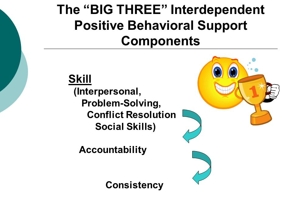 The BIG THREE Interdependent Positive Behavioral Support Components Skill (Interpersonal, Problem-Solving, Conflict Resolution Social Skills) Accounta