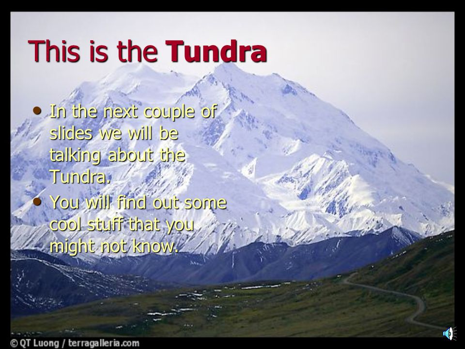 This is the Tundra In the next couple of slides we will be talking about the Tundra.