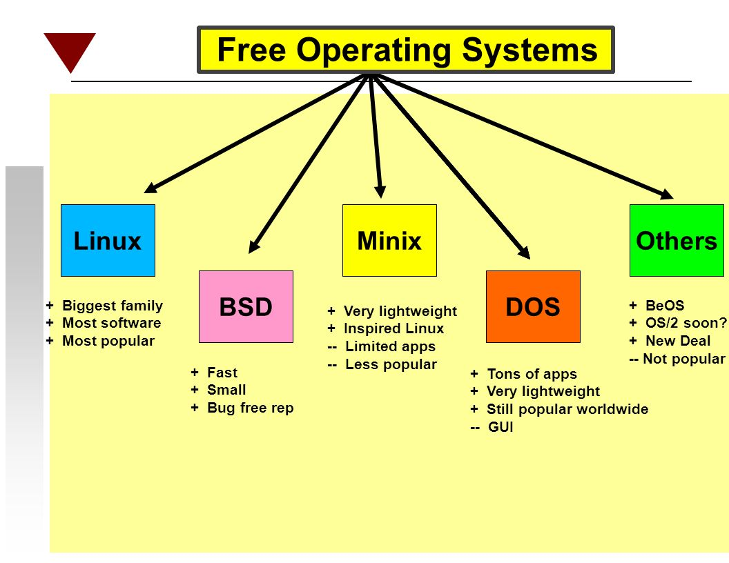 Linux BSD Minix DOS Others + Biggest family + Most software + Most popular + Fast + Small + Bug free rep + Very lightweight + Inspired Linux -- Limited apps -- Less popular + Tons of apps + Very lightweight + Still popular worldwide -- GUI + BeOS + OS/2 soon.