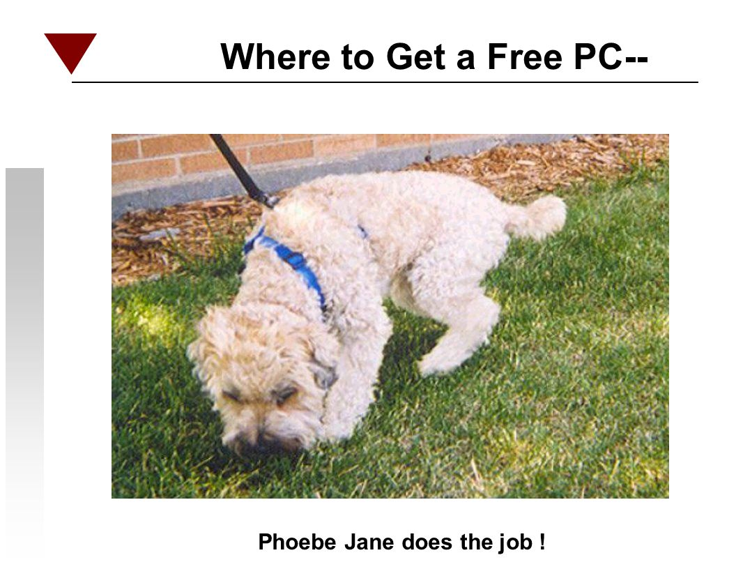 Where to Get a Free PC-- Phoebe Jane does the job !