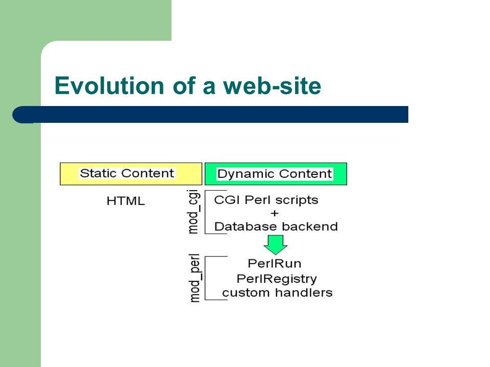 Evolution of a web-site