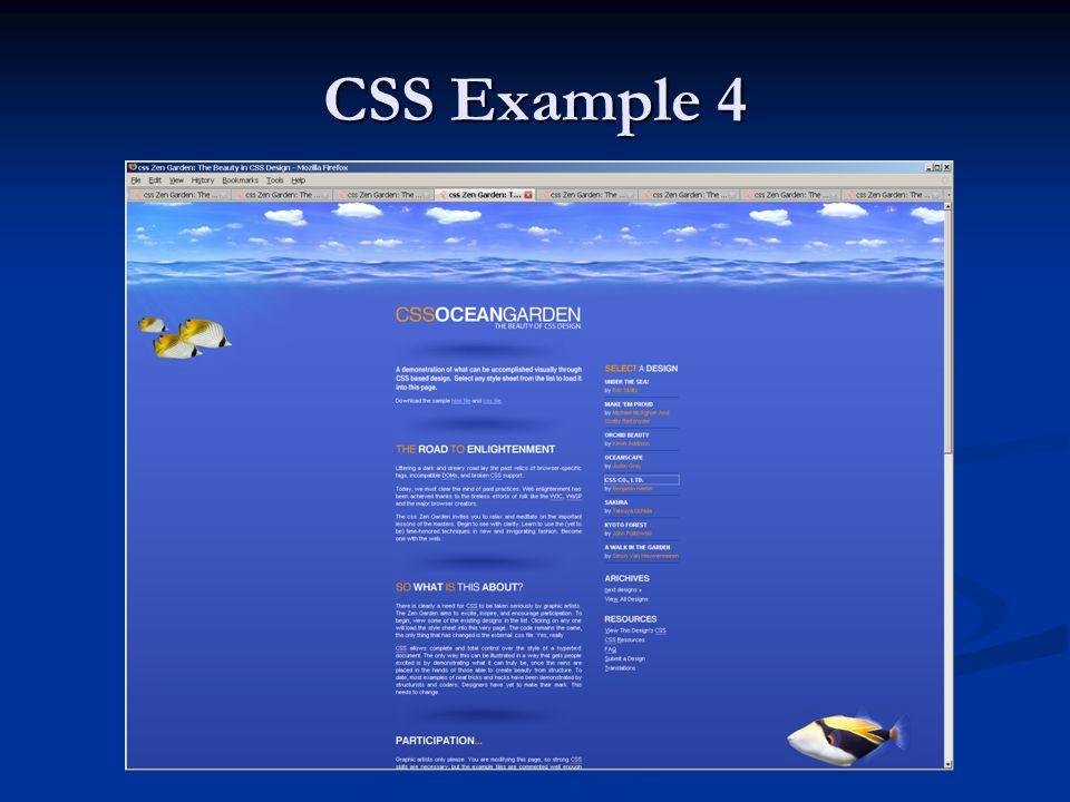 CSS Example 4