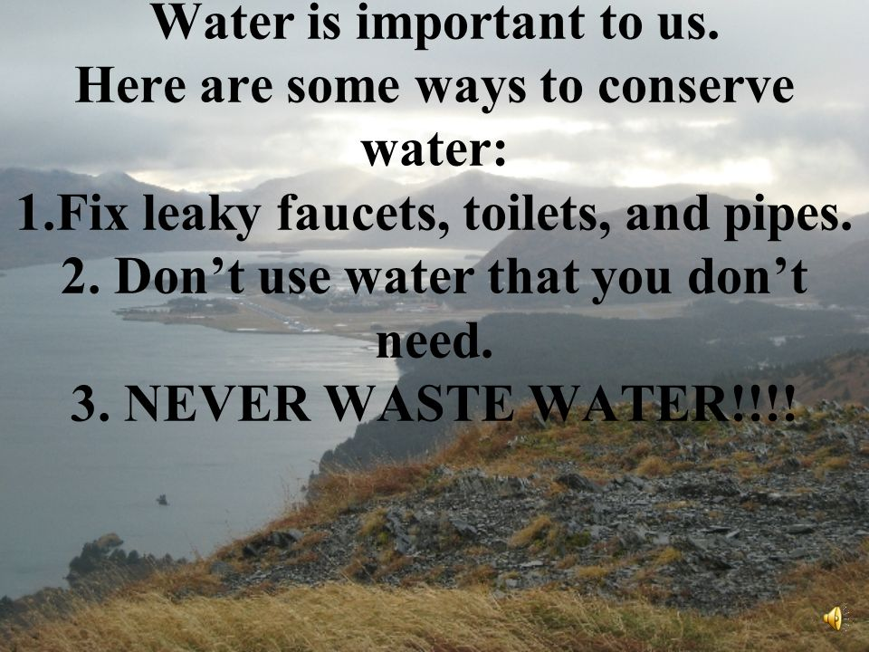 When the water gets polluted, it not only effects us, but it also effects the animals too.