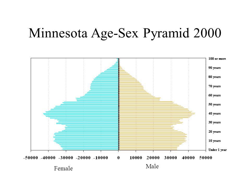 Minnesota Age-Sex Pyramid 2000 Female Male