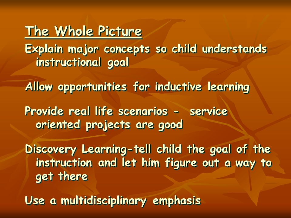 The Whole Picture Explain major concepts so child understands instructional goal Allow opportunities for inductive learning Provide real life scenario