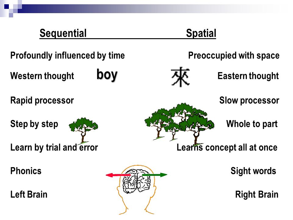 SequentialSpatial Profoundly influenced by time Preoccupied with space boy Western thought boy Eastern thought Rapid processor Slow processor Step by step Whole to part Learn by trial and error Learns concept all at once Phonics Sight words Left Brain Right Brain
