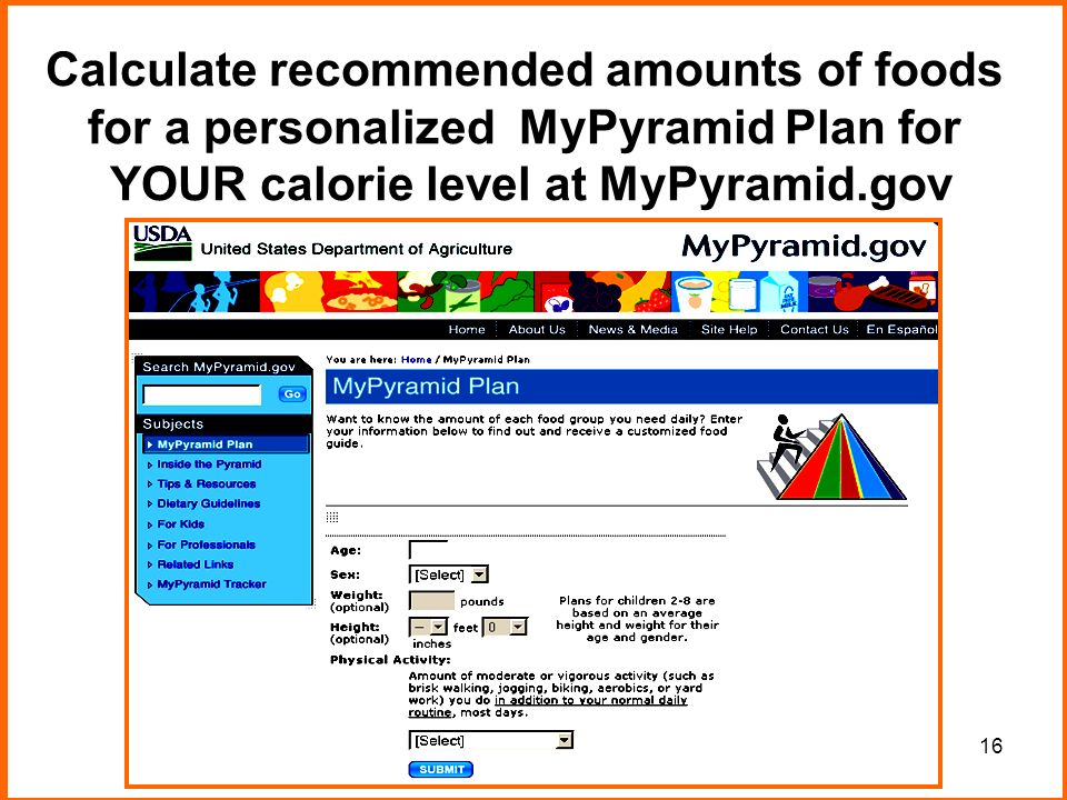 16 Calculate recommended amounts of foods for a personalized MyPyramid Plan for YOUR calorie level at MyPyramid.gov