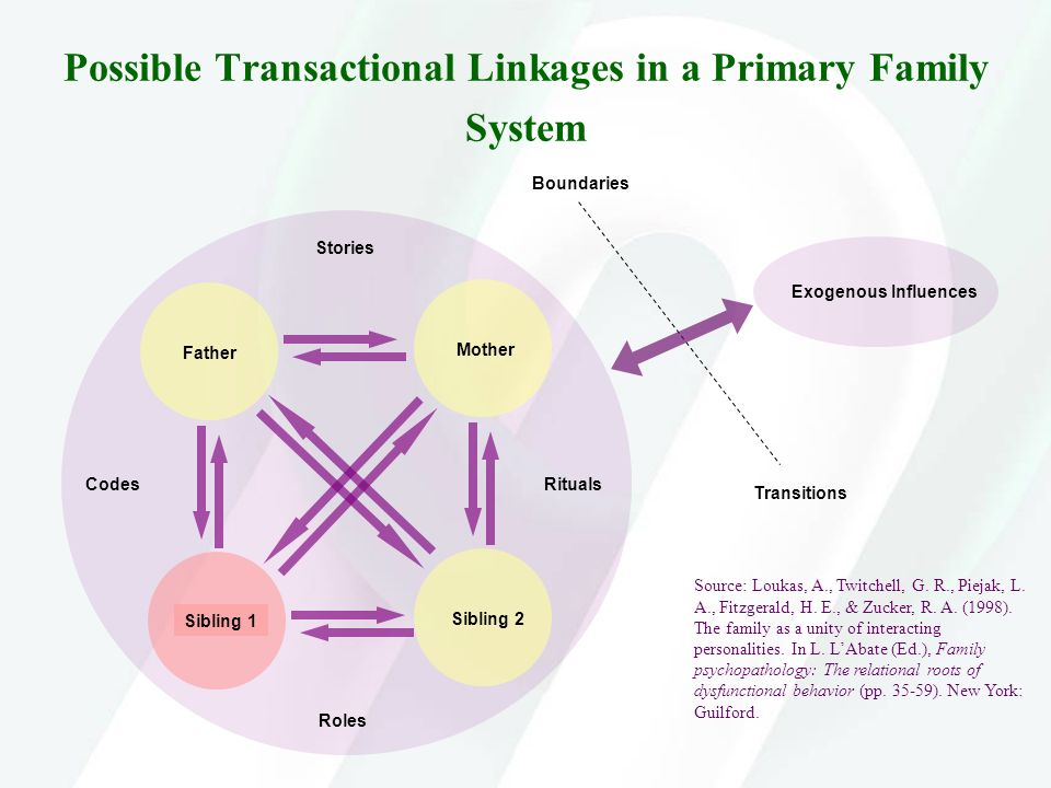 Possible Transactional Linkages in a Primary Family System Exogenous Influences Boundaries Transitions Stories CodesRituals Roles FatherMother Source:
