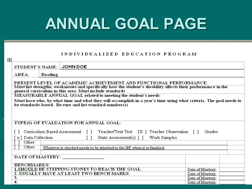 ANNUAL GOAL PAGE