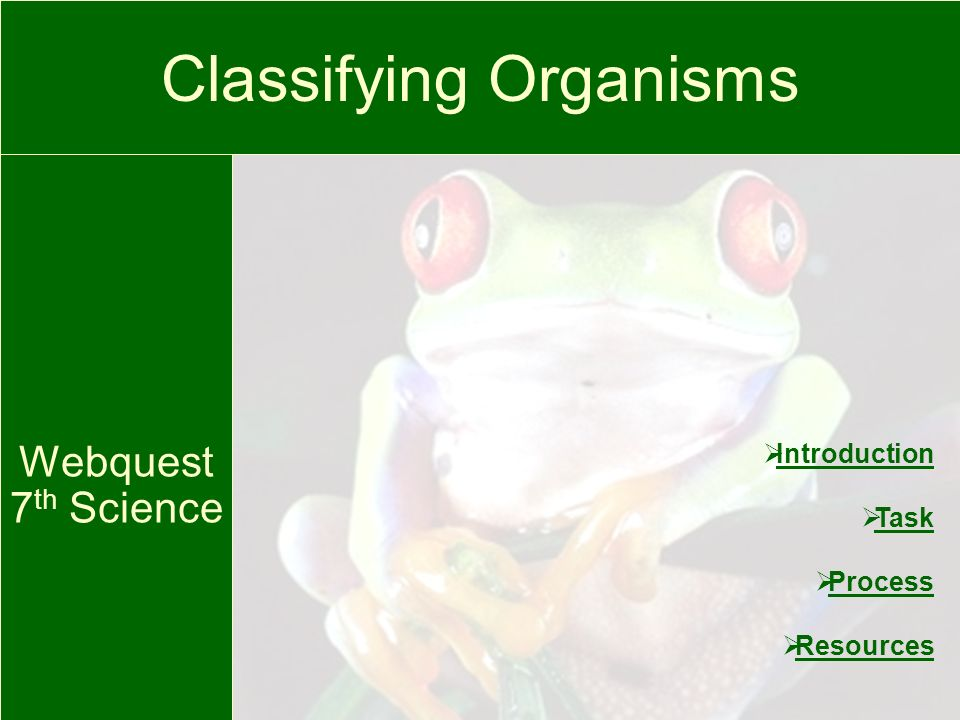 Classifying Organisms Webquest 7 th Science Introduction Task Process Resources