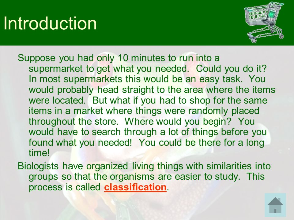 Introduction Suppose you had only 10 minutes to run into a supermarket to get what you needed. Could you do it? In most supermarkets this would be an
