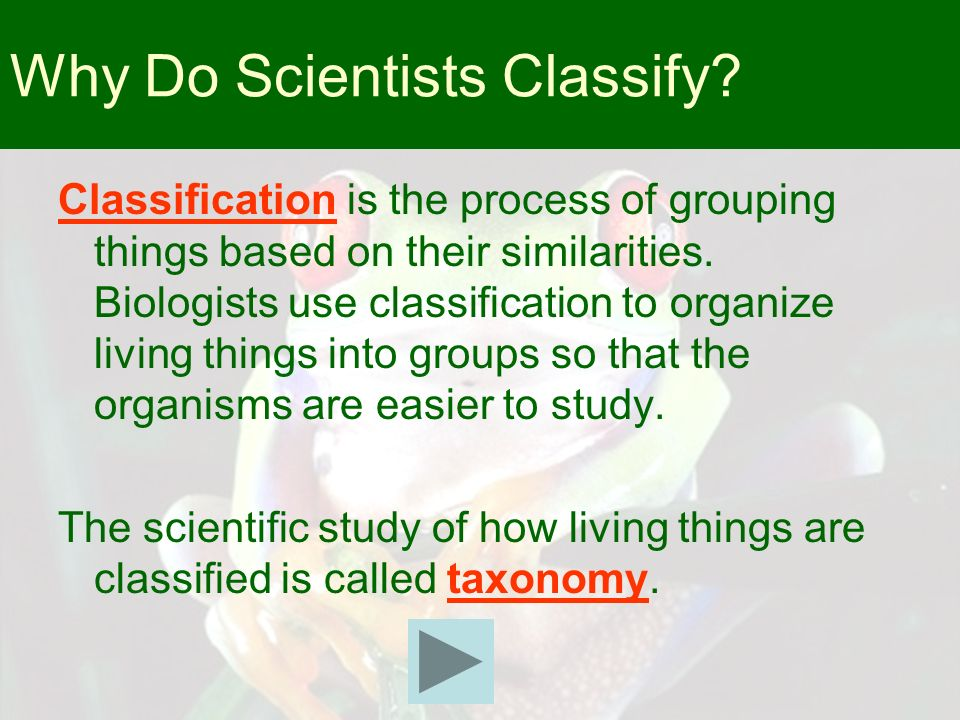 Why Do Scientists Classify? Classification is the process of grouping things based on their similarities. Biologists use classification to organize li