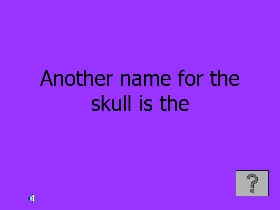 Another name for the skull is the