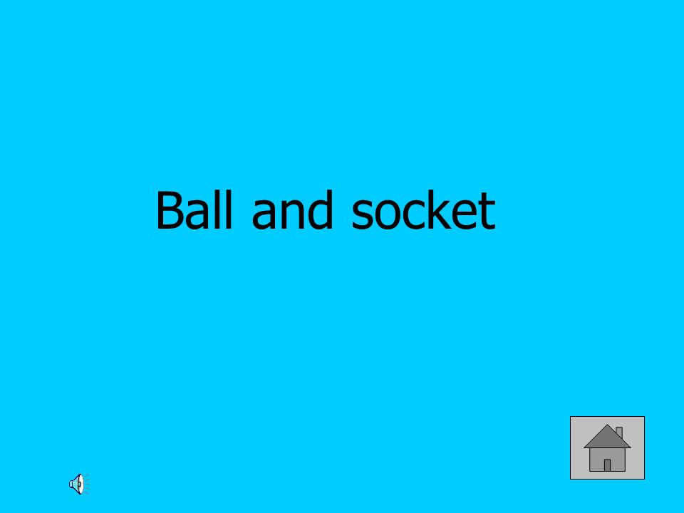Ball and socket