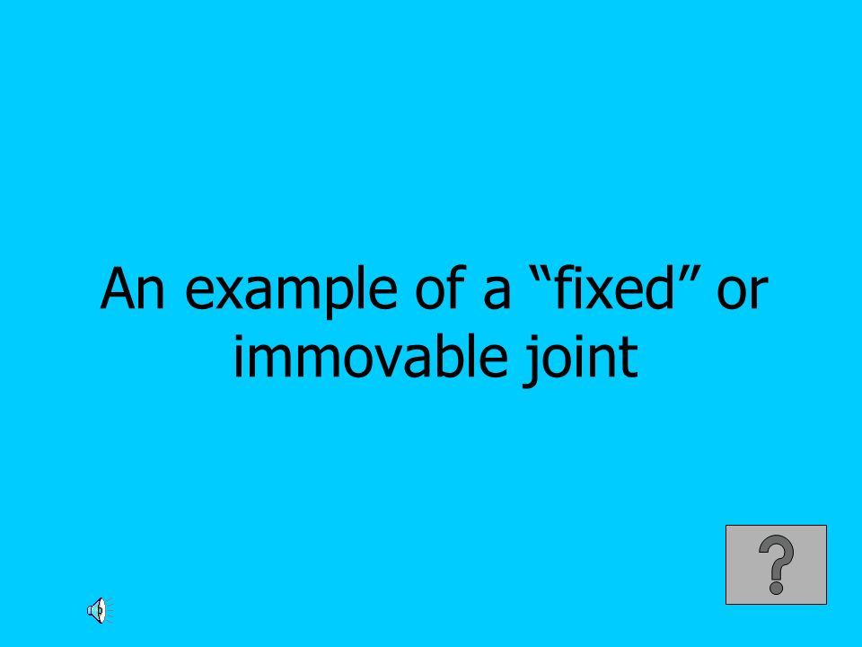 An example of a fixed or immovable joint